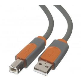 Belkin Câble USB 2 - A/B - 5 mètres - CU1000AED16
